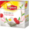 LIPTON - Thé blanc Framboise
